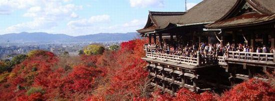 京都借金返済法律事務所